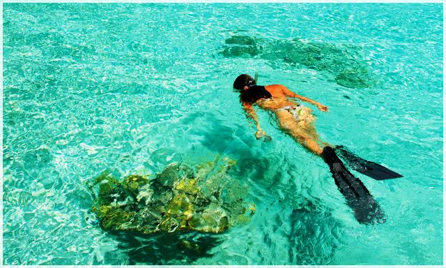 ako šnorchlovať ? ako sa ponoriť pod hladinu ?